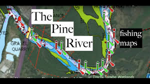 fishing pine river brisbane maps and more