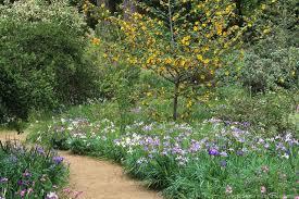 Slo Botanical Garden by The Beauty Of Natives Photobotanic