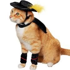 Dog Halloween Costumes Girls 45 Amazing Cat Costumes Images Animals Funny