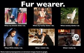 What I Actually Do Meme - what i really do meme fur wearer by stanhoneythief on deviantart