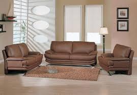 Brown Shag Area Rug by Minimalist Living Room Budget Minimalist Living Room Apartment