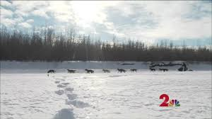 Iditarod Map Lodges Along Iditarod Trail Brace For Financial Hit As Race Start