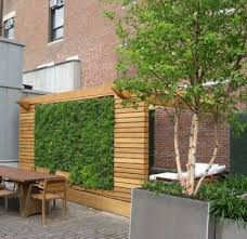 garden privacy small garden ideas 12 cool garden privacy ideas