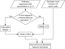 estimation of delays in generalized asynchronous boolean networks