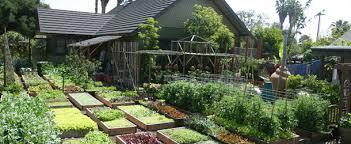 self sustaining garden organic gardening my self sufficient living