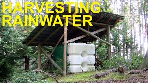 rainwater harvesting off grid youtube