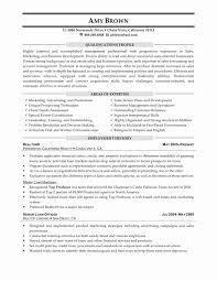 simple sample advertising representative sample resume resume sample