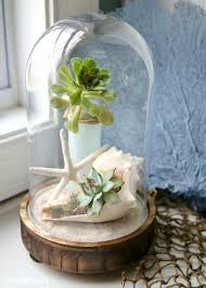 picture of succulents and a star fish and a shell terrarium for a