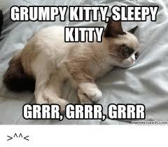 Sleepy Kitty Meme - grumpy kitt sleepy kitty grrr grrr grrr memecrunchcom kitties