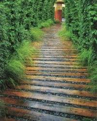 Backyard Walking Paths Best 25 Walking Paths Ideas On Pinterest Best Cheap Bourbon