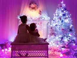 quiz decorate a tree and we ll reveal your