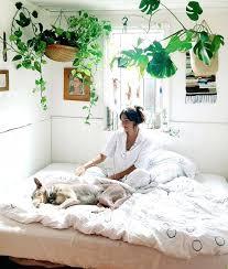 room with plants indoor bedroom plants betweenthepages club