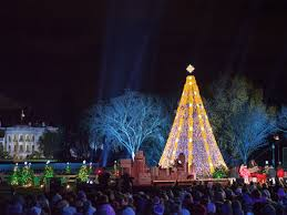national christmas tree lighting 2016 famous christmas trees from around the world