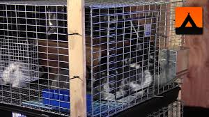 A Frame Kit by How To Make A Frame Kit For A Rabbit Cage Cheap And Easy Youtube