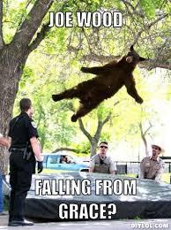 Smokey The Bear Meme - falling bear meme generator image memes at relatably com