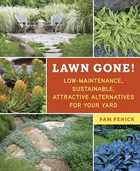 alternatives to grass in backyard lawn gone low maintenance sustainable attractive alternatives