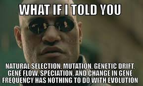 Gene Meme - genetic drift stupidbadmemes