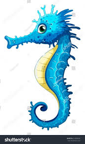 illustration closeup seahorse stock vector 216003028 shutterstock