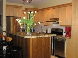In Design Kitchens Kitchen Island Ideas Kitchen Island Wzaaef