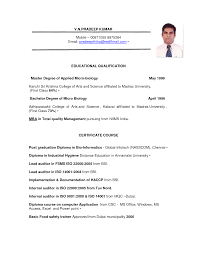 Staff Auditor Resume Sample Sample Resume Of Accountant In Dubai Resume Ixiplay Free Resume