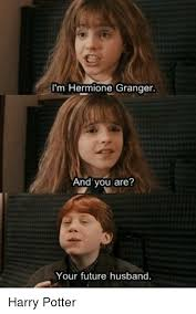 Hermione Granger Memes - lm hermione granger and you are your future husband harry potter