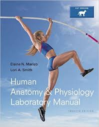What Is Human Anatomy And Physiology 1 Amazon Com Anatomy U0026 Physiology Books