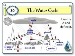 the water cycle task cards with editable template by tangstar