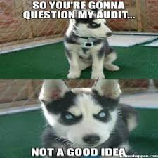 So You Mad Meme - you don t want to really make me mad do you meme insanity puppy