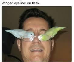 Eyeliner Meme - winged eyeliner on fleek funny memes daily lol pics