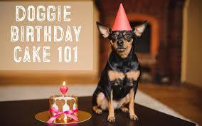 dog birthday cake dog birthday cake 101 easy recipes for dog cakes and pupcakes