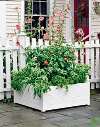 raised vegetable garden bed kits home outdoor decoration