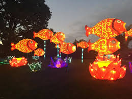 first look 14 photos of china lights at boerner botanical gardens