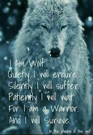 Wolf Meme - unique 20 lone wolf meme wallpaper site wallpaper site