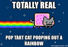 Cat Rainbow Meme - totally real pop tart cat pooping out a rainbow nyan cat cool