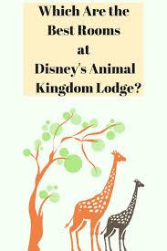 the 25 best animal kingdom ideas on pinterest disney animal