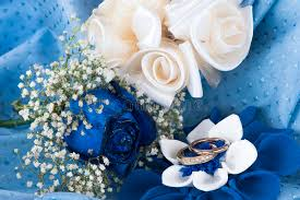 white and blue roses a blue roses and wedding rings stock photo image of
