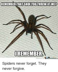 Funny Spider Meme - 25 best memes about break his legs break his legs memes