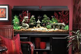 custom fish tanks 11 jpg 600 400 fish tanks 55