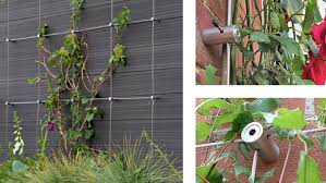 Trellis System Green Wall Cable Trellis Systems S3i Com