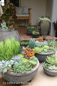 Front Porch Planter Ideas by Sedum And Succulent Planters Planters Group And Tutorials