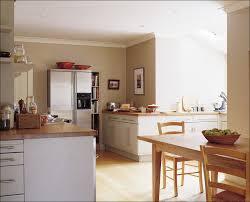 Modern Kitchen Color Schemes Kitchen White Kitchen Cabinets With Black Appliances Kitchen