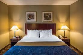 comfort inn rochester monroe avenue updated 2017 prices u0026 hotel