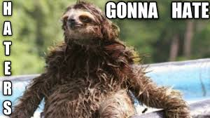 Sloth Jokes Meme - sloth meme do you like jalapenos