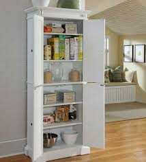 kitchen pantry cabinet design ideas awesome kitchen pantry storage cabinet or pantry cabinet