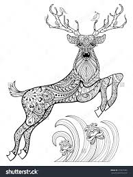 coloring pages adults deer coloring