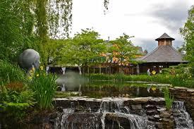 how to create a zen garden in your backyard city of creative dreams