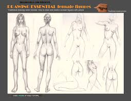 to draw female figures and anatomy