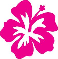 8 best images of hawaiian flower outline hibiscus flower outline