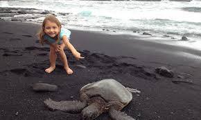 black sand beach big island punalu u black sand beach admiring a honu hilton mom voyage