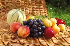 livraison de fruits au bureau livraison de fruits corbeille les plaisirs fruités livraisons de